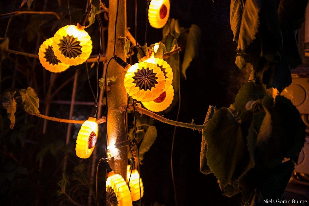 Thematische Lichterkette im botanischen Garten