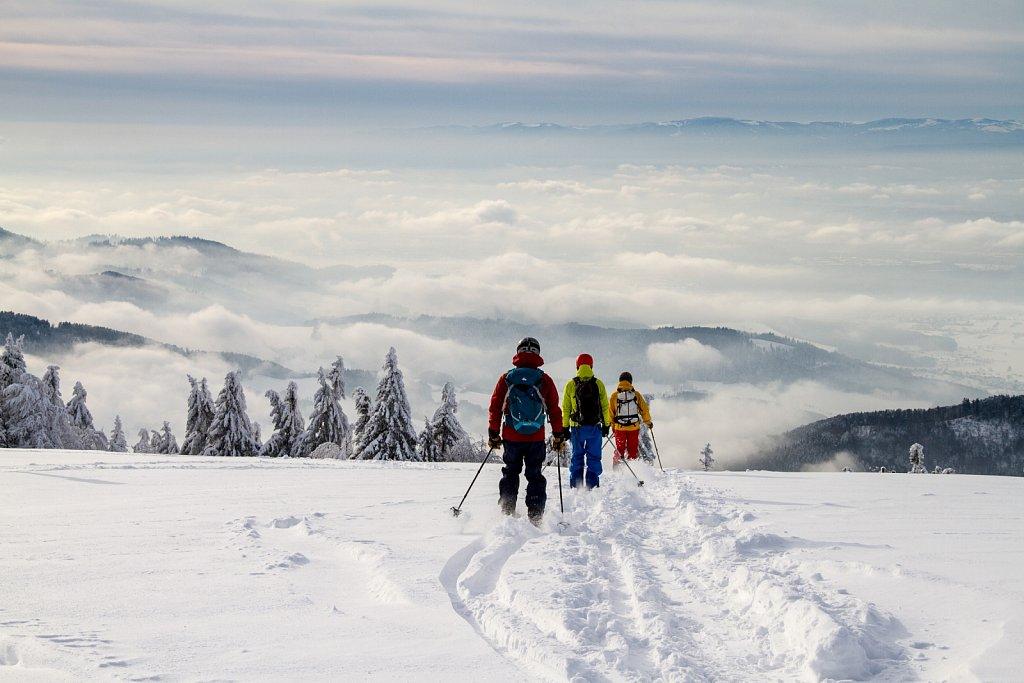 Bodensee im Winter